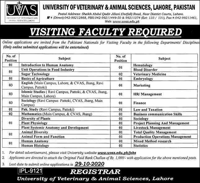 University Of Veterinary And Animal Sciences UVAS Lahore Jobs 2021