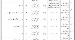 Pakistan Coast Guard PCG Sipahi Jobs 2021 Application Form Last Date