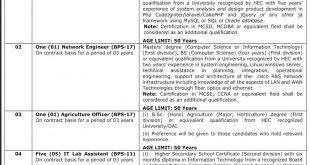 Cholistan University Of Veterinary CUVAS Bahawalpur Jobs 2021