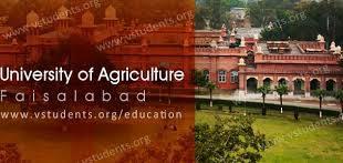 University of Agriculture Faisalabad UAF Entry Test 2021 Dates Venue Sample Paper
