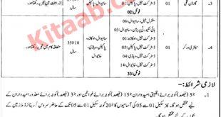 Punjab High Security Prison Department Sahiwal Jobs 2021 Registration Form Last Date